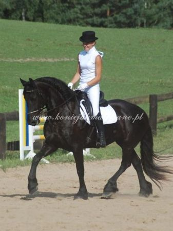 2010.07.31 - Zawody Rascalino i Vienus w Bismarku
