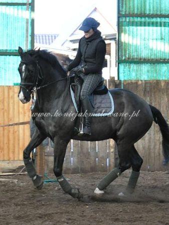 2011.02.04 - 6 - Konsultacje Te Amo z R. Dysarzem