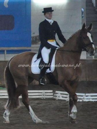 2011.02.11 - 13 - HZR w Sopocie z Te Amo