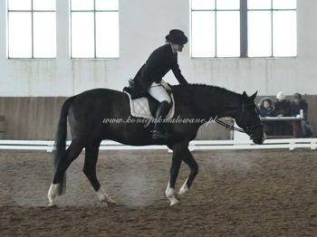 2011.02.18 - 20 - HZR w Białogórze z Te Amo